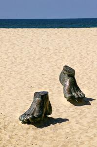 feet-425041