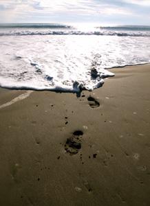 footprints-389224