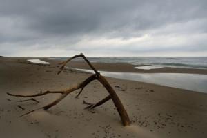 beach-96197_1280